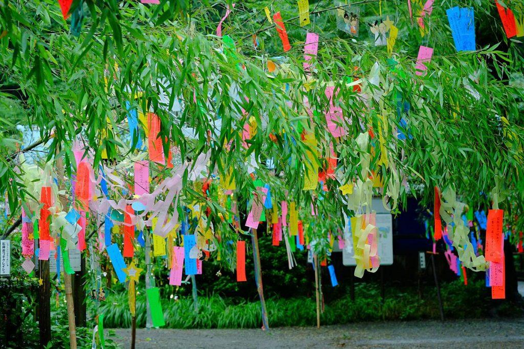 幫助你準備日文檢定的小知識: 你知道日本七夕有這些傳統嗎?
