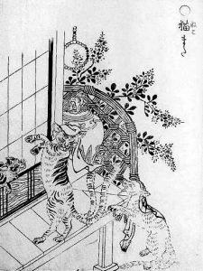 https://en.wikipedia.org/wiki/Nekomata#/media/File:SekienNekomata.jpg